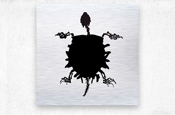 Fossil Turtle  Metal print