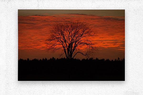 Wisconsin November Sunset Wood County  Metal print