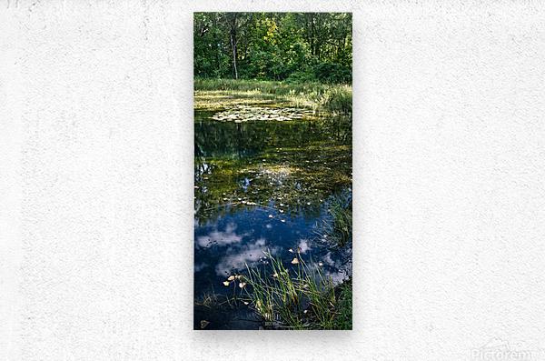 Monet style 2  Metal print