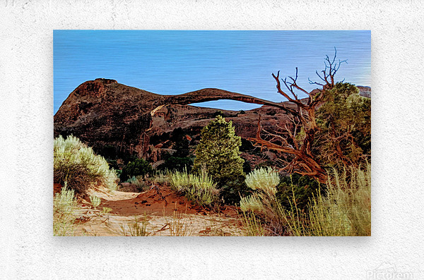 Landscape Arch I  Metal print