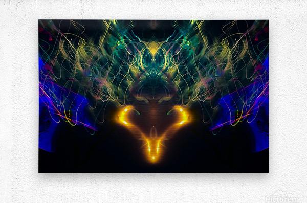 OWL MESSENGER  Metal print