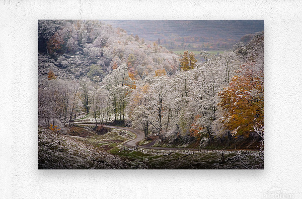 Autumn snow on Back Hollow Road Tucker County West Virginia  Metal print