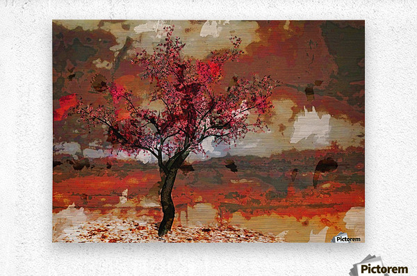 Summer cherry tree  Metal print