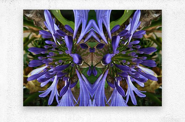 flower3  Metal print