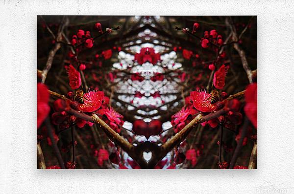 flower83  Metal print
