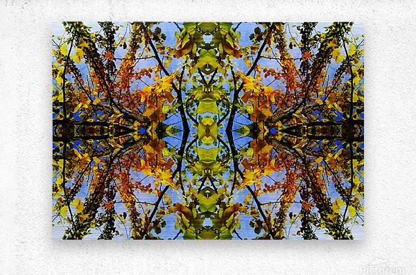 flower43  Metal print