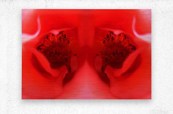 flower19  Metal print