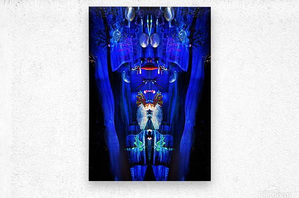 Lights12  Metal print