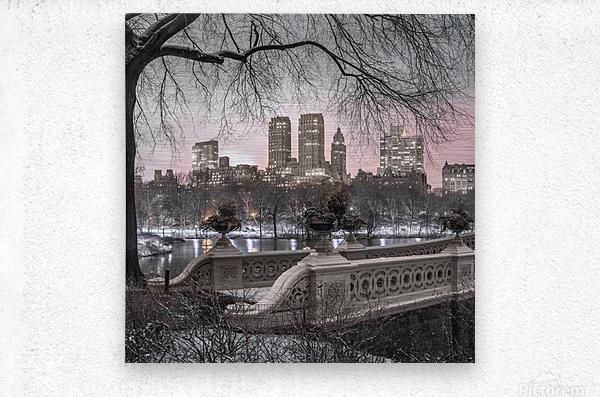 Central park with Manhattan skyline, New York  Metal print