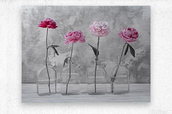 Peonies in glass bottles  Metal print