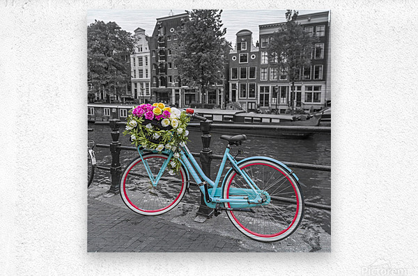 Bicycle with bunch of roses on bridge, Amsterdam  Metal print