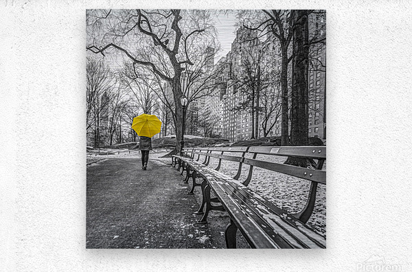 Tourist on pathway with Yellow umbrella at Central park, New York  Metal print