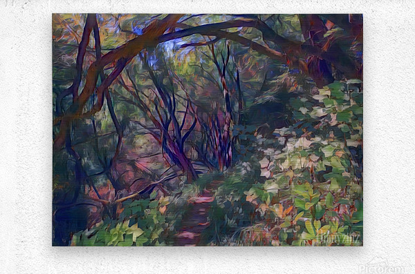 Arch of trees  Metal print