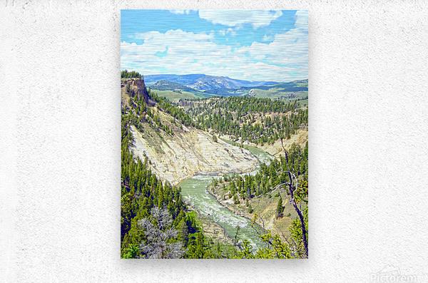Wild Yellowstone  Metal print