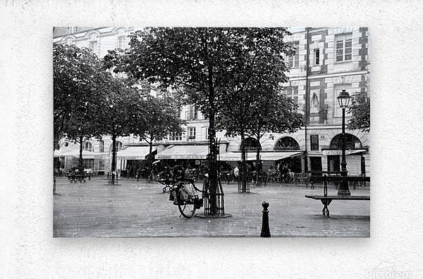 Place du Marche Sainte Catherine  Metal print