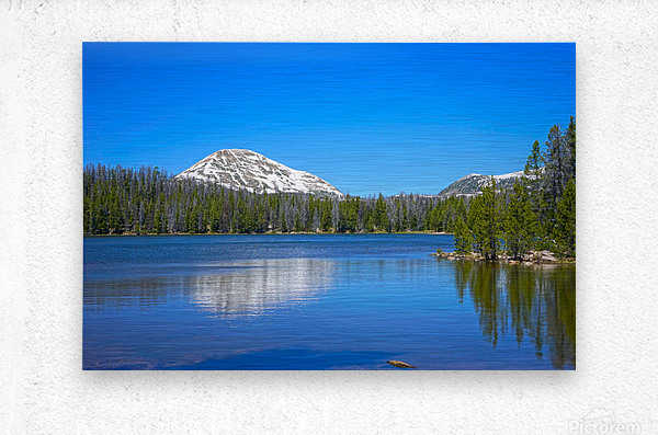 On The Road to Mirror Lake 5 of 5  Metal print