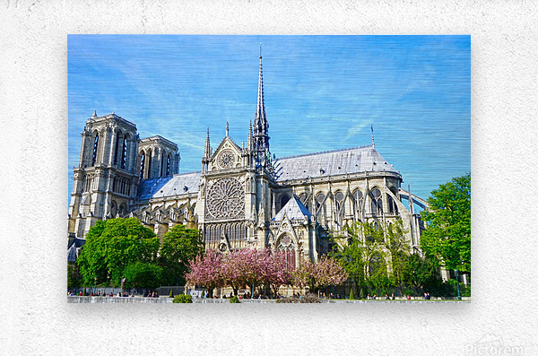 Notre Dame @ Paris  Metal print