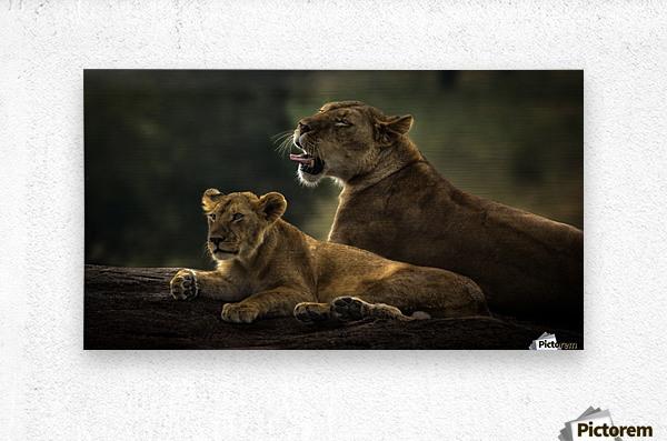 Family by suraj1007    Metal print