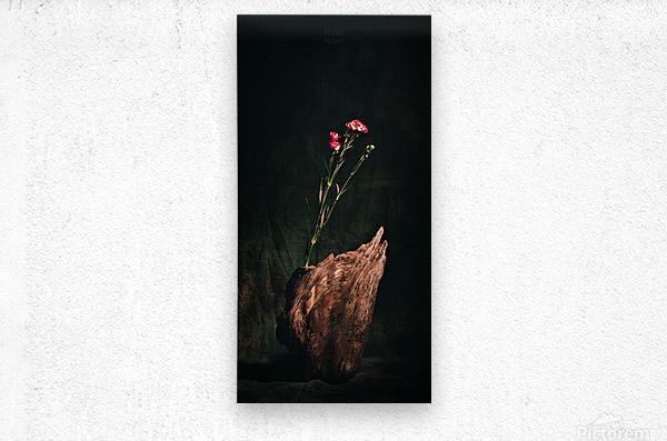 Inspiration Zen  Metal print