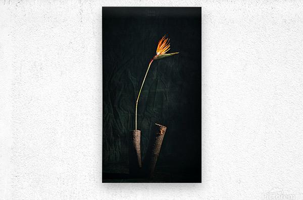 Zen 1  Metal print