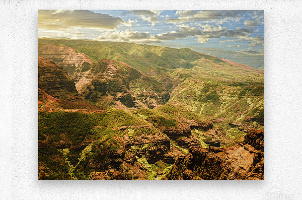 Untamed Kauai 2 of 5  Metal print