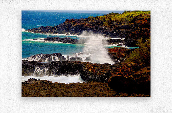 Rugged Kauai  Metal print