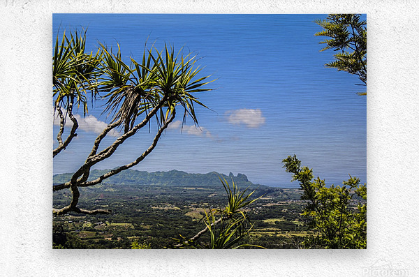 View to Forever  Metal print