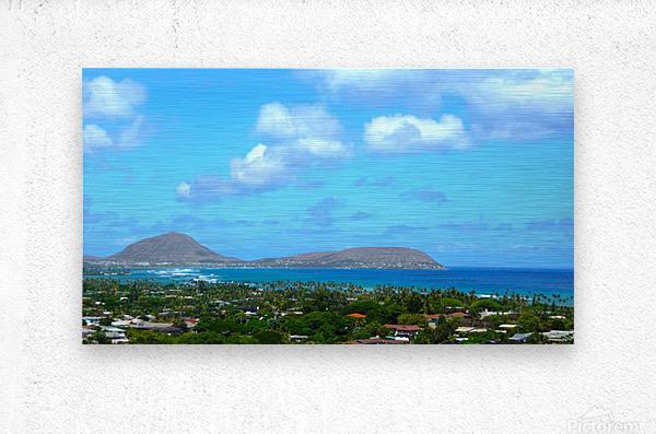 Scenic Hawaii  Metal print