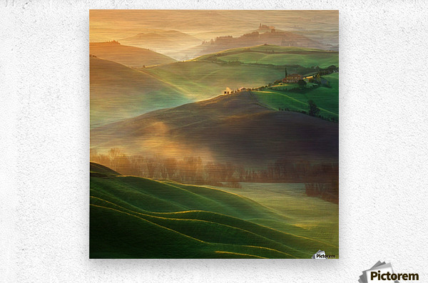 Morning Dreams  Metal print