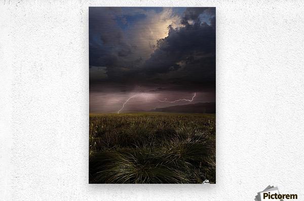 Summer Lights by Franz Schumacher   Metal print