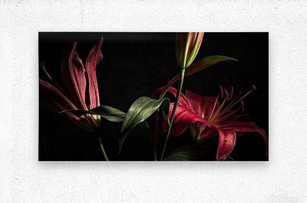 Floraison 2  Metal print