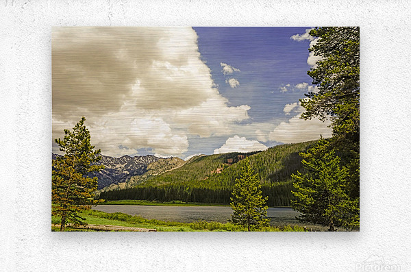Back Country Colorado 6 of 8  Metal print