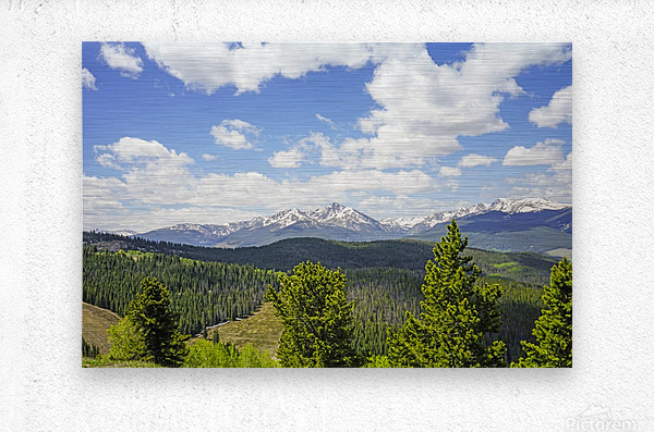 Back Country Colorado 1 of 8  Metal print