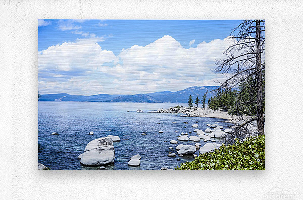 Out West 5 of 8  Metal print