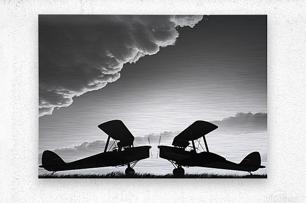 Biplanes Face Off  Metal print