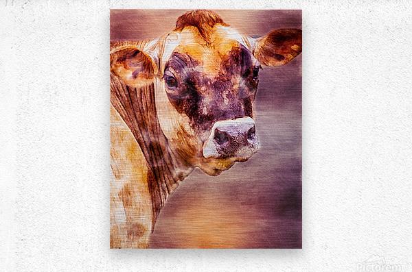 Beautiful Dairy Cow  Metal print