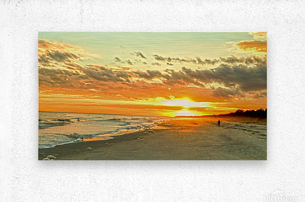 The Carolina Sunset  Metal print