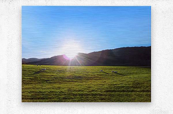 One Day in Wales 5 of 5  Metal print