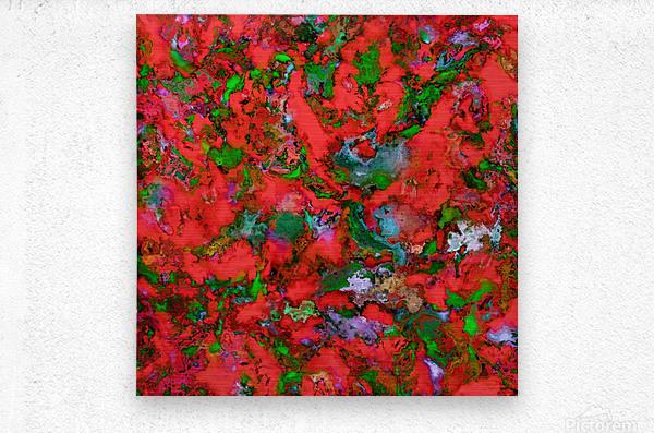 The edge of the red lake  Metal print