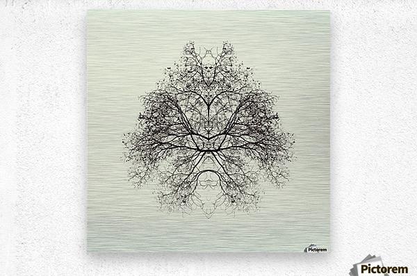 Rorschach Test by Nadav Jonas   Metal print