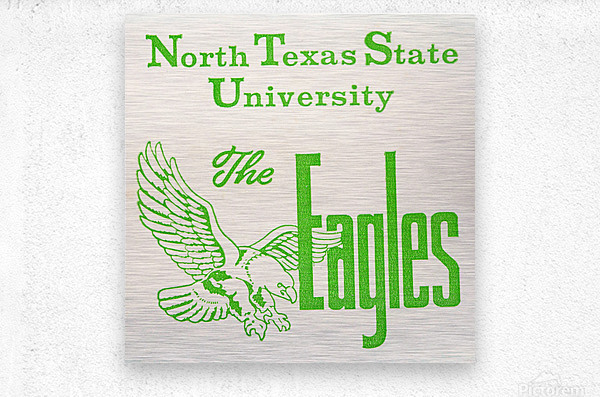 Vintage North Texas State University Eagles Art  Metal print