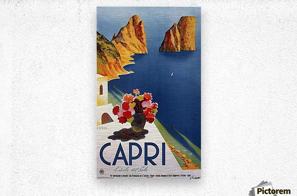 Vintage Capri  Metal print