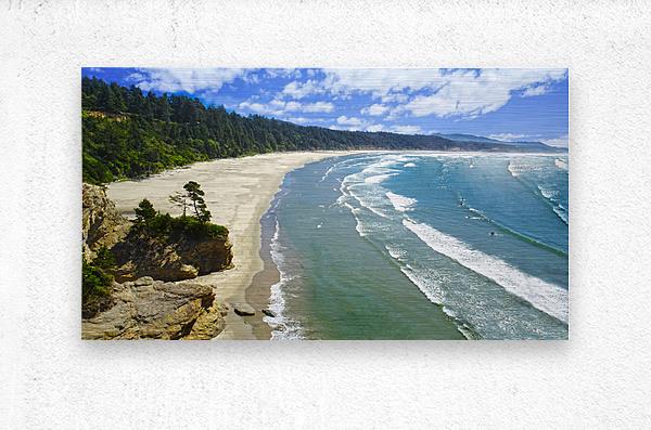 Wild Oregon Coast  Metal print
