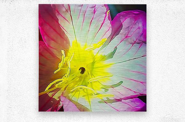 Flower Close Up  Metal print