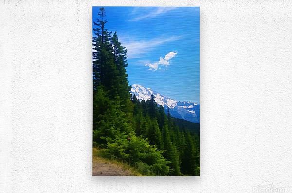 washington state mountains  Metal print