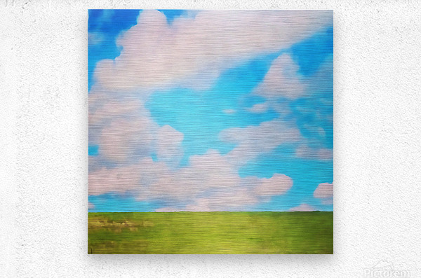 fluffy afternoon  Metal print