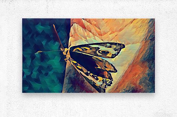 butterfly art  Metal print