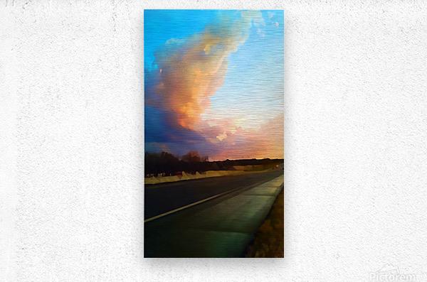 highway beauty  Metal print