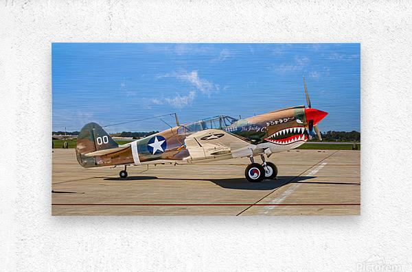 P 40 Warhawk  Metal print