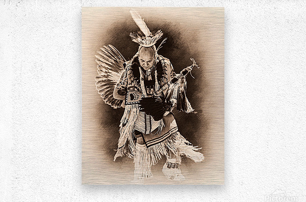 Native American 14  Metal print